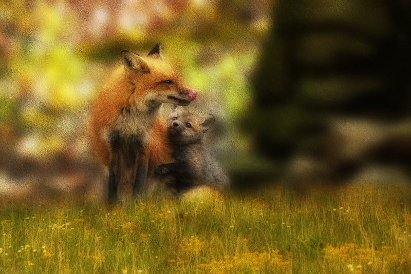 Paintography - little loven with dad