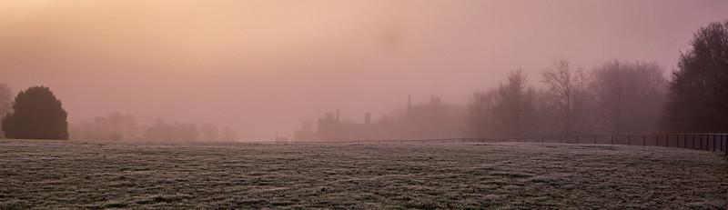 2019 - Foggy dawn on the Penshurst Estate 003.jpg