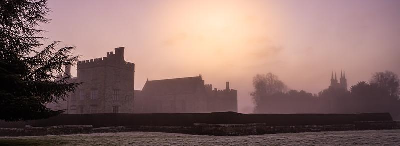 2019 - Foggy dawn on the Penshurst Estate 001.jpg