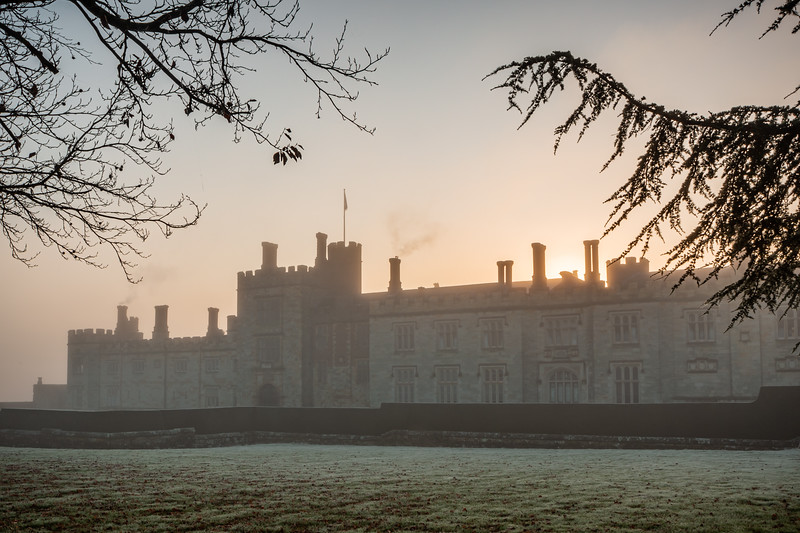 2019 - Foggy dawn on the Penshurst Estate 032.jpg