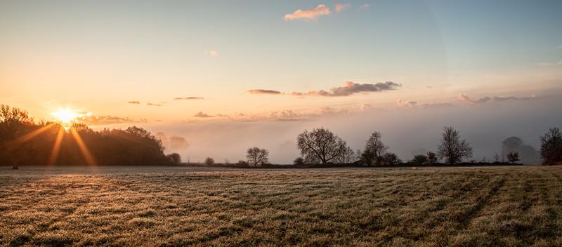 2019 - Foggy dawn on the Penshurst Estate 018.jpg