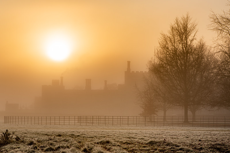 2019 - Foggy dawn on the Penshurst Estate 030.jpg