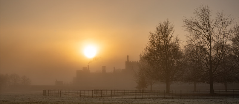 2019 - Foggy dawn on the Penshurst Estate 031.jpg