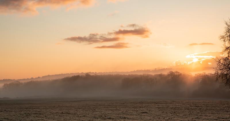 2019 - Foggy dawn on the Penshurst Estate 017.jpg