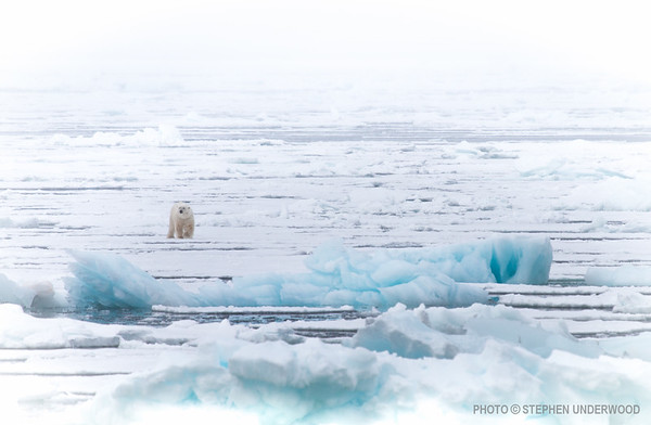 Photographs from Arctic Svalbard