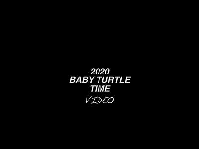 2020 BABY TURTLE S