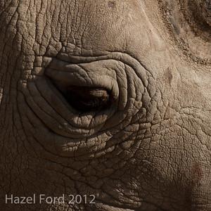 Kenya January 2013