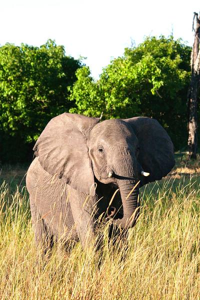 Botswana0335