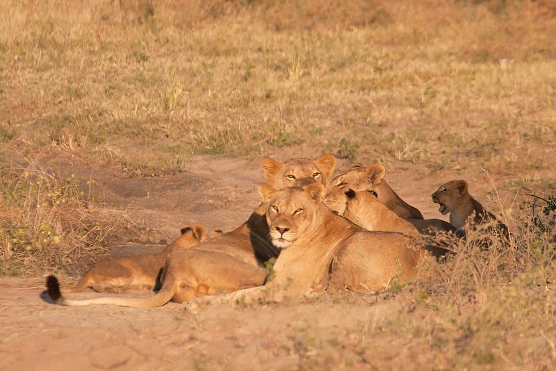 Botswana0135