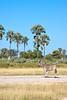 Botswana0384