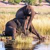 Botswana0839
