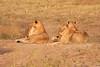 Botswana0108