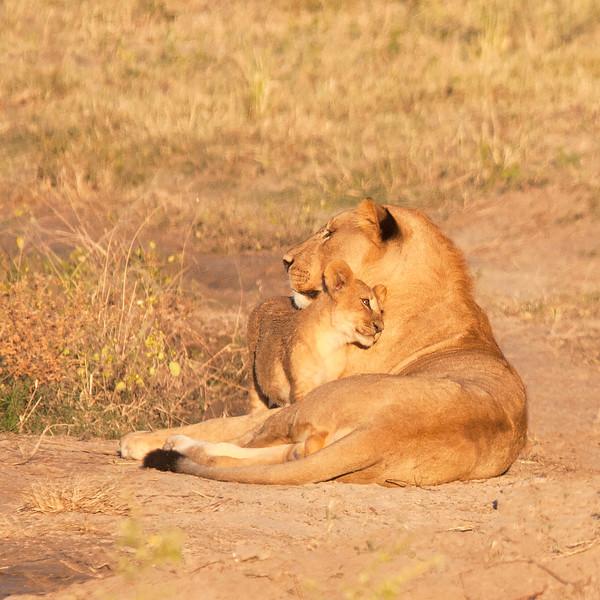 Botswana0107