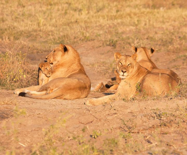 Botswana0102