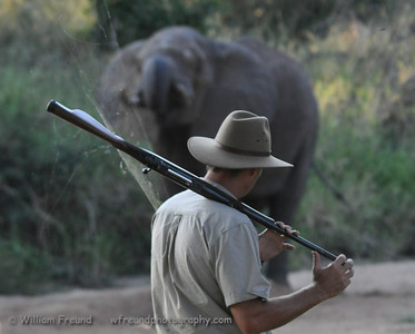 Keeping our distance...walking safari in South Africa.