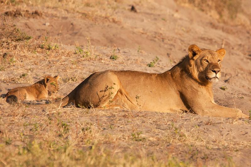 Botswana0941