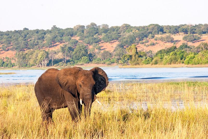 Botswana0878