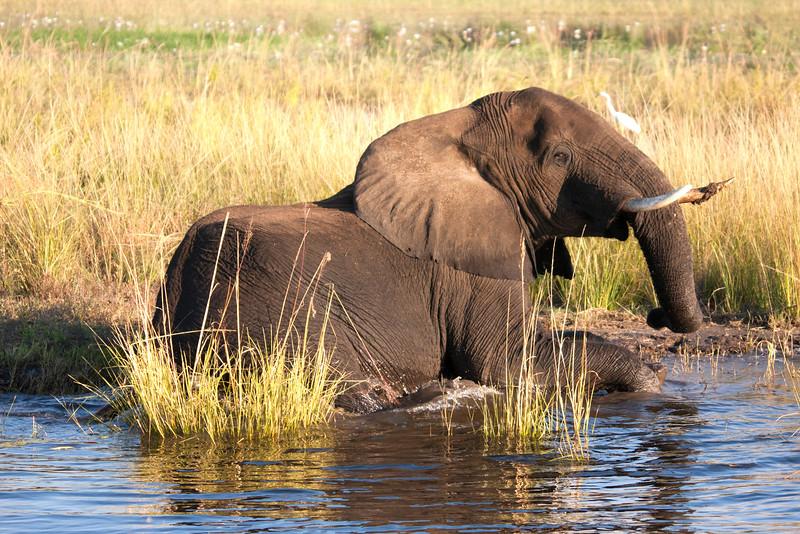 Botswana0852