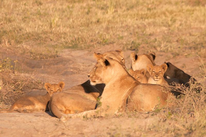 Botswana0144