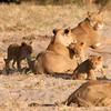 Botswana0964