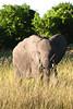 Botswana0336