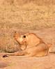 Botswana0132