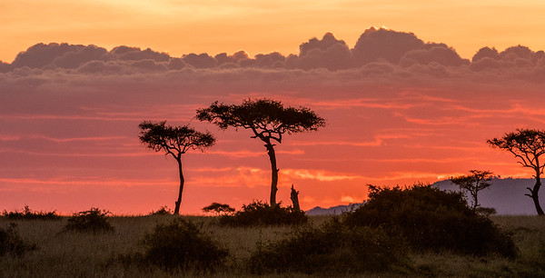 Sunset over the Mara. Masai Mara safari with Mel, Lily and Chelsey.  Mara Engai Tented camp in The Mara Triangle.  October 30 to November 2nd, 2017.  Photo by: Stephen Hindley ©