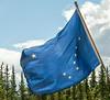 Alaskan Flag
