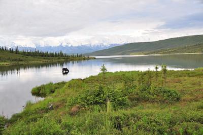 Wonder Lake - Denali National Park - Alaska