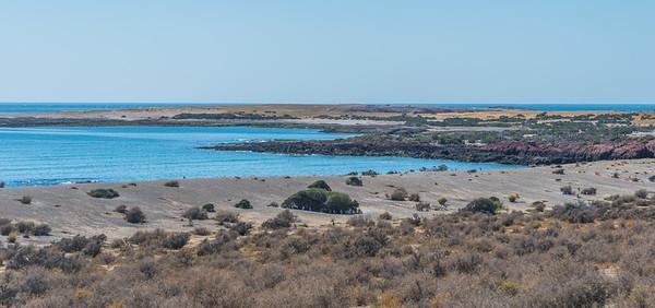 Punta Tombo