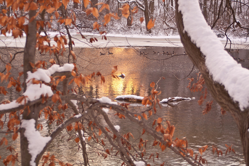 The sun sets on an icy pond.
