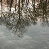 Trees and storm clouds are reflected in a winter pond.