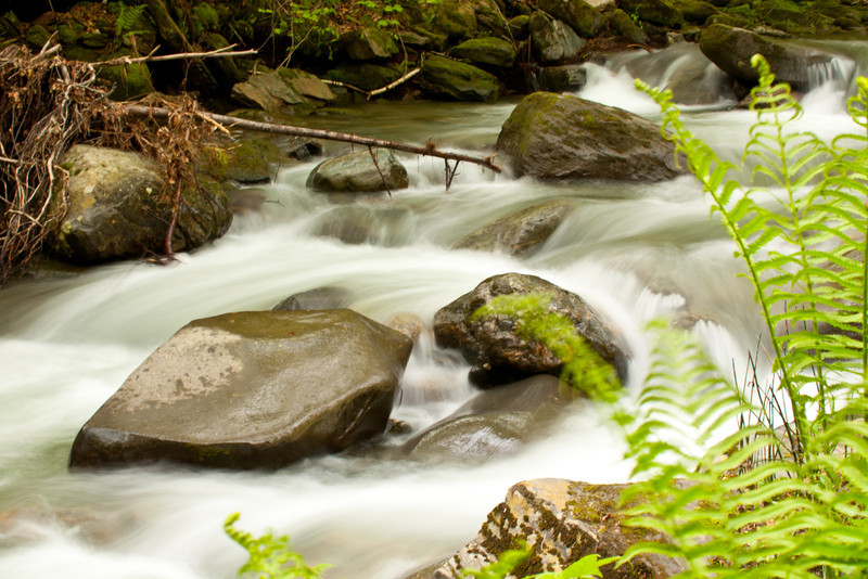 A rushing stream in Vermont after a storm.