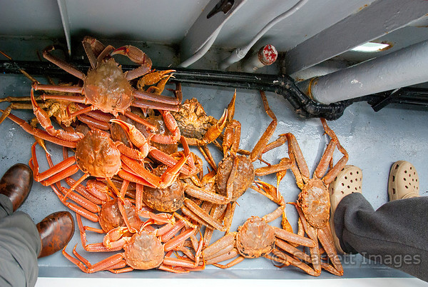 We ate fresh crab aboard the boat!