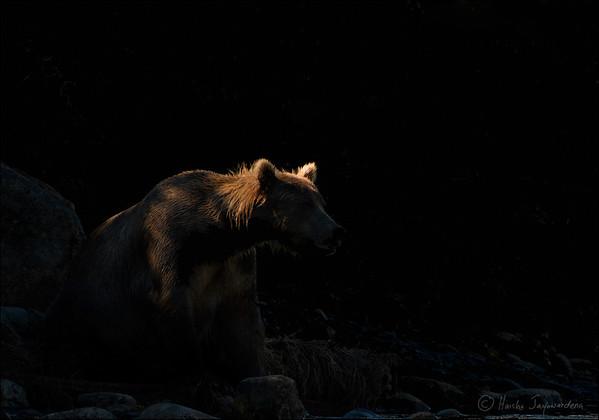McNeil River Game Sanctuary, Alaska