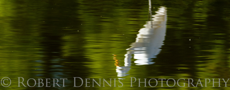 Egret Reflection, El Dorado Park, Long Beach