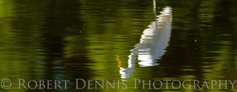 Egret Reflection, El Dorado Park, Long Beach