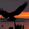 Layered Sunset & Osprey