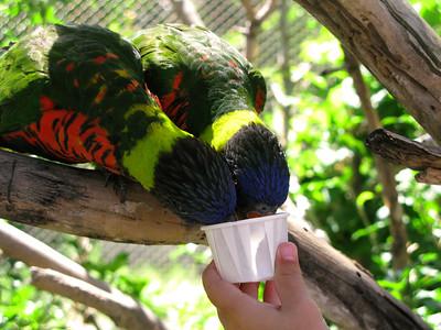 CO 2010 09 Denver Zoo 73
