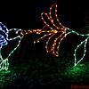 Hummingbird lights