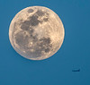 Biscayne Bay National Park - Elliott Key - Supermoon