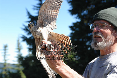 Raptor banding at Bonney Butte.
