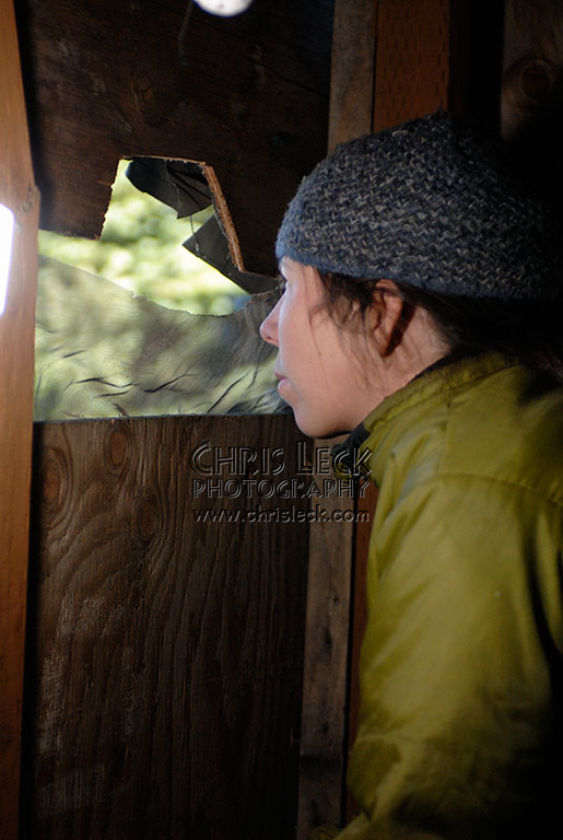 Watching for birds from the blind