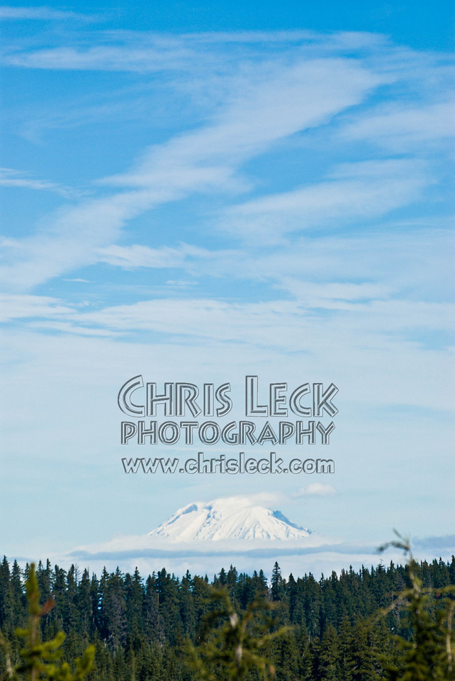 View of Mt. Hood from the observation point