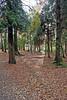 Balloch Park