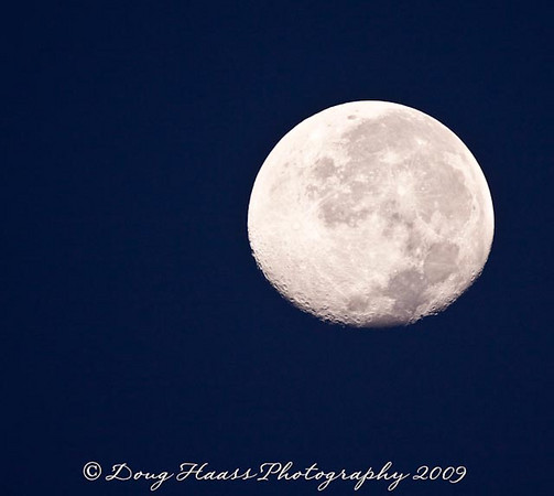 Moon over Brazos Bend State Park