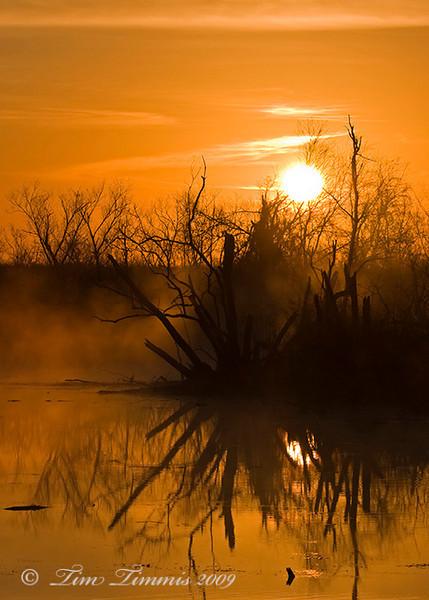 Foggy sunrise 3