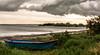 Camargue Landscape