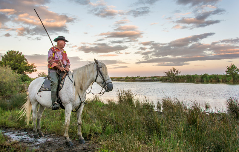 Camargue Guardian & Horse at Sunrise in the Marsh