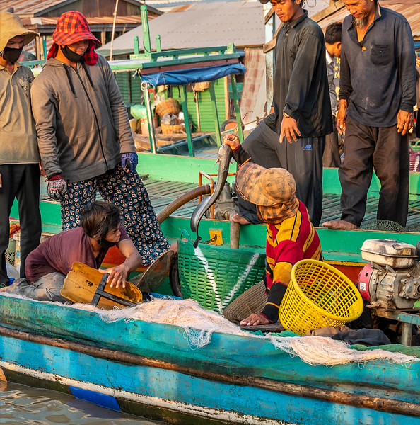 Cambodian  Floating Village of Vietnamese Immigrants